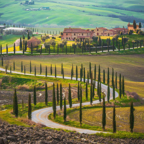 ONE DAY IN TUSCANY
