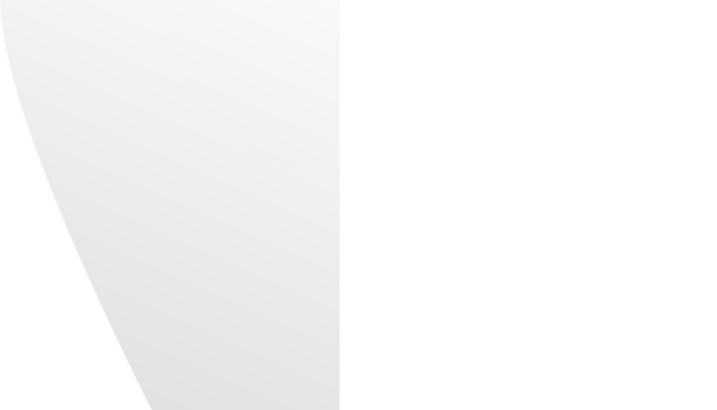 logobn